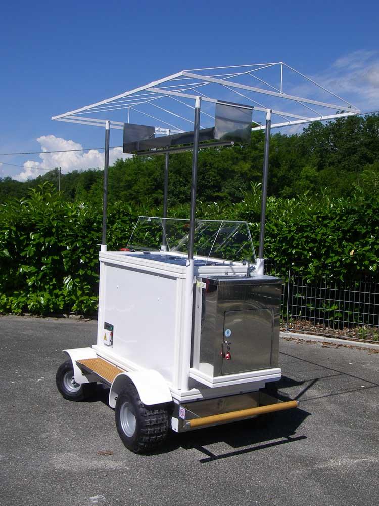 veicoli elettrici allestiti